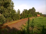 Triebzug 117-393 der MAV-START quert einen Bahn�bergang bei Ujkenez, Ungarn, am 24.6.16