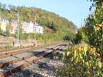 41 1144-9 verlässt am 29.09.18 den Bahnhof Greiz mit dem Elstertal Express nach Cheb/Tschechien.